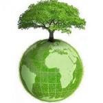 Já está em vigor a Lei de Política Nacional de Resíduos Sólidos. O que fazer para não levar multa?