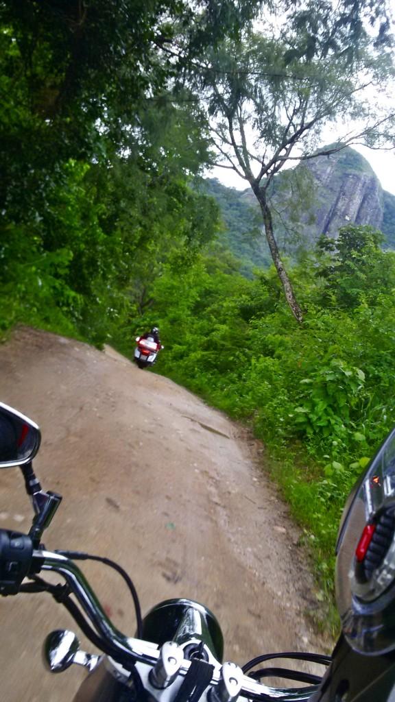 paracupeba foto 8