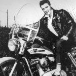 Harley-Davidson: A história de uma paixão. Uma marca tão conhecida quanto Coca-Cola.